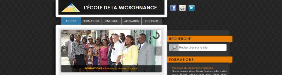 ecolde-de-la-microfinance-wordpress-site-internet